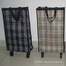 Removable shopping bag with wheels