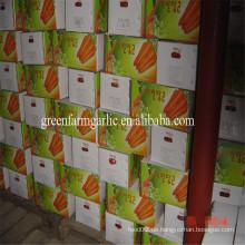 2016 neue Ernte billige Karotte Fabrik Größe 80-150g
