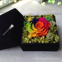 cores / corantes para flores reais / plantas / flores secas / PreservedFreshFlower