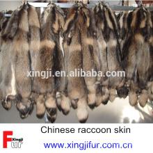 Chino vestido de piel de perro mapache