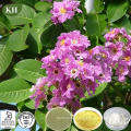 Banaba Leaf Extract Can Be Used for Balancing Blood Sugar