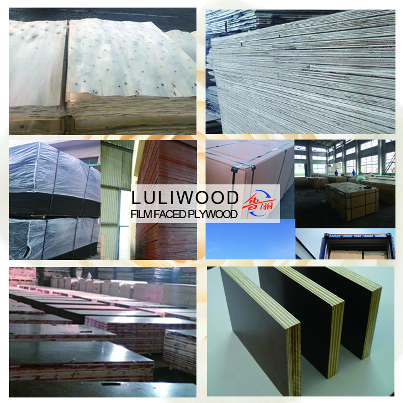 luliwood black film faced plywood of sally
