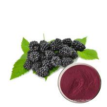 top supply good price natural black mulberry juice powder