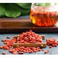Organische frische 100% natürliche getrocknete Goji Beere / getrocknete Wolfberry / getrocknete Goji Beeren
