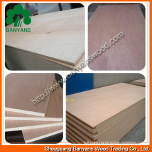 Commercial Plywood with Various Veneer
