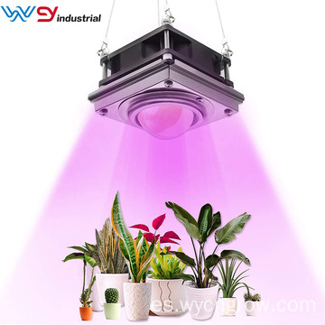 LED Grow Light / Sunlike Plantas de espectro completo Luces