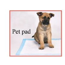 Non-Woven Underpad Pet Pad