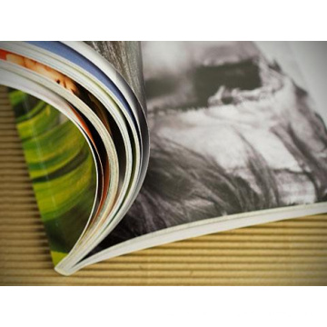 Folder Printing Unternehmen Magazine Printing Guangzhou