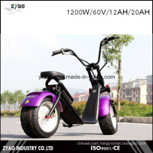 Third Generation Electric Vehicle Harley Style 1200W with Removable Battery for Charing