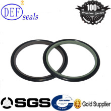 PTFE Buffer Rod Seal with Oring