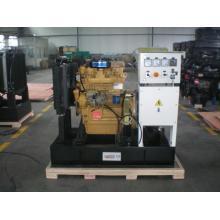 generador diesel de 30 kW R4100ZD