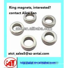 circular magnet ring/circular ring magnet
