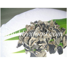Good Quality Black Fungus Wood Ear