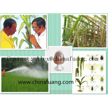 Agroquímicos Repollo Caterpillar Insecticida vegetal ecológico Control de plagas Bacillus Thuringiensis
