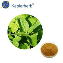 Nettle extract Plant extract