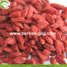 Venta caliente Super Dry Fruit Sexual Strength Wolfberries