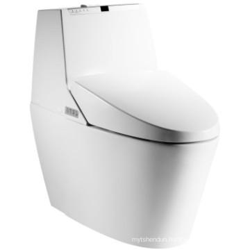 Automatic Ceramic Intelligent Toilet (JN30607)