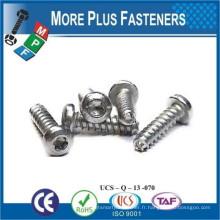 Fabriqué en Taiwan Plasten Thread Forming Screw