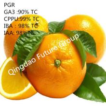 Phenylurea Cytokinin Forclorfenuron Kt-30 A Cytoquinina mais ativa