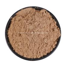 Sechium Edule Powder Poudre de matière première de chayote