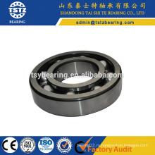 Радиальные шарикоподшипники для подшипников электродвигателей 6319 c3