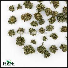 FT-017 getrocknete Panax Notoginseng oder Sanqi Großhandel duftenden Geschmack Blume Kräutertee