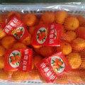 Golde Fournisseur de Sweet Baby Mandarin