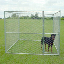 Cool Dog Fence Питомник