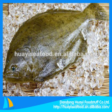 Poisson plat dans les fruits de mer congelés