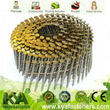 Clou de bobine de vis de vis pour la construction et l'emballage