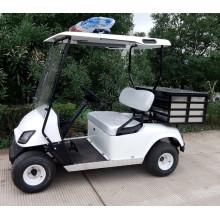 2 кресла гольф-грузопассажирский автомобиль на продажу