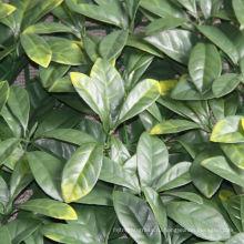 сад декоративный искусственный плющ лист винограда расщепленный бамбук забор покрытиями