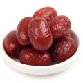 Ningxia New Product Jujube