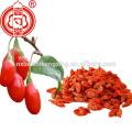 Ningxia approvisionnement direct certifié biologique séché goji berry de bonne qualité gouqi