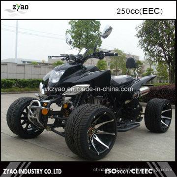 Adult ATV EEC Legal on Street Hot Sale