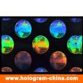 Transparent Custom 3D Laser ID Overlay Pouch