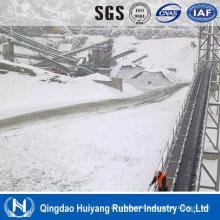 Cold Area Material Handling System Cold Resistant Conveyor Belt