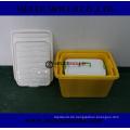 Plastik Werkzeug für Container Box Mold in Molding
