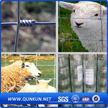 Electro Galvanized Iron Wire Mesh Cattle Fencing
