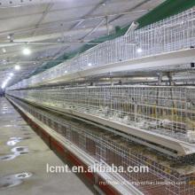 Gaiolas de frango de corte resistentes ao envelhecimento e resistentes à corrosão, populares no mundo