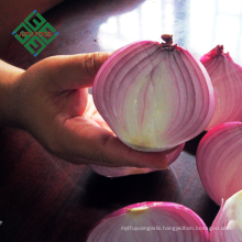 price for Chinese fresh onions