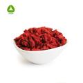 Wolfberry / Goji Berry Extract Powder Polysaccharide 20%