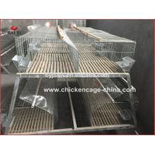 Fabricant de cage de lapin galvanisé