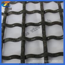 Galvanized Crimped Square Weaving Wire Mesh