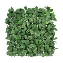 12 штук 50 x 50 см по оптовой свежий ПЭ искусственний зеленый цвет стен для наружного использования