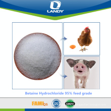 Betaine Hydrochloride 95% feed grade