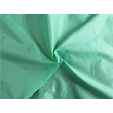 20d Nylon Taffeta Fabric for Down Coat (XSN002)