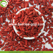 Contoh Gratis Hot Sale Kering Goji Berries Tibet