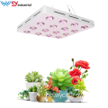 3200W Diy Cob Led Grow Light Vollspektrum