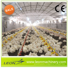 Complete Poultry equipment for broilers with feeding and drinking system